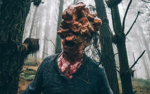 Кордицепс: гриб превращающий в «зомби» ради продолжения рода