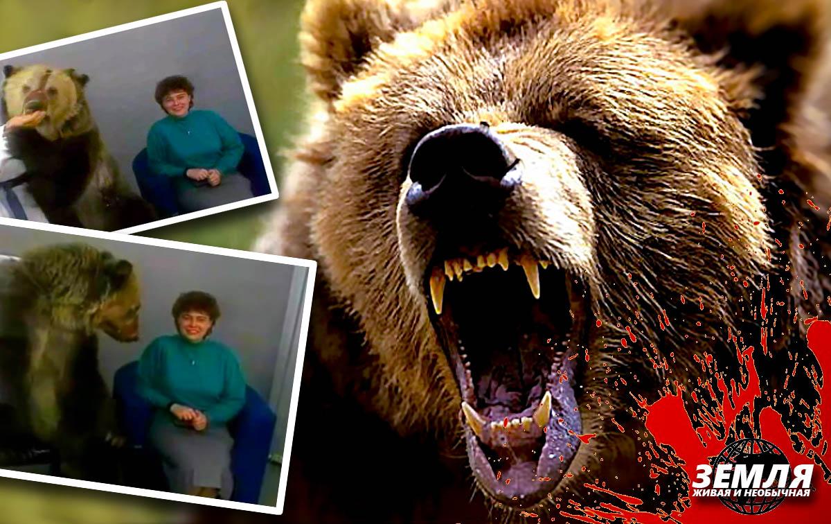 Медведь нападает неожиданно: не стоит заигрывать с хищником